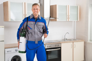 best pest control of garden grove ca